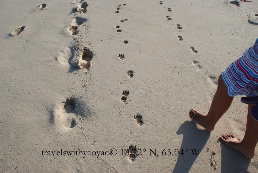 Footprints on Anguilla